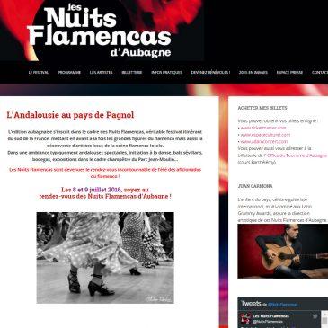 Photo pour la page internet des nuits flamencas d' Aubagne