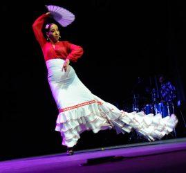 Les Nuits Flamencas d'Aubagne 2016