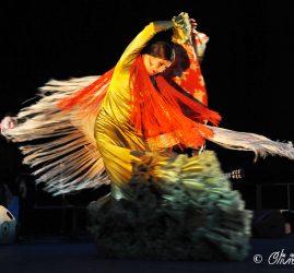 Les Nuits Flamencas 2017
