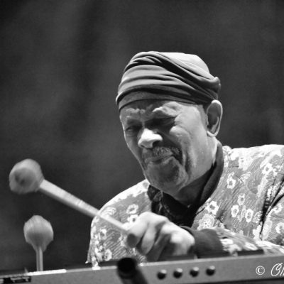 Roy Ayers  - Marseille jazz des 5 continents 2017